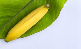 Fresh banana has soft pulpy flesh and yellow skin when ripe with. Banana leaf isolated on white background. Copy space for your text Royalty Free Stock Photography