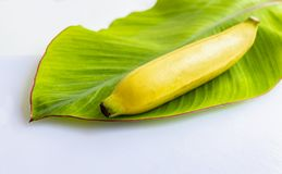 Fresh banana has soft pulpy flesh and yellow skin when ripe with. Banana leaf on white background. Copy space for your text Stock Photo