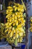 Fresh banana Royalty Free Stock Photography