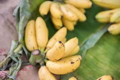 Fresh Bananas Being Sold Stock Photography