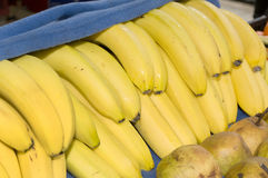 Fresh bananas covered by a blue blanket. Novi Sad, Serbia Royalty Free Stock Image