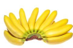 Fresh bananas isolated royalty free stock photo