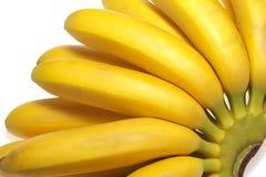 Fresh bananas isolated stock photography