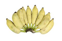 Fresh bananas isolated on white background Royalty Free Stock Photos