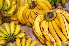 Fresh Bananas on the market Stock Photography