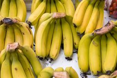 Fresh bananas for sale at city market. Fresh bananas for sale at city farmers market stock photo