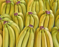 Fresh bananas for sale Stock Photo