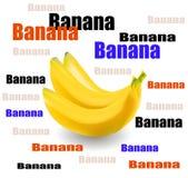 Fresh bananas vector Stock Image