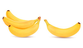 Fresh bananas  on white. Royalty Free Stock Images