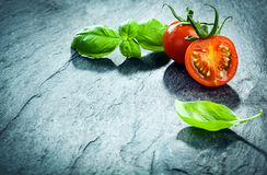 Fresh basil and grape tomato border. Arranged in the top right corner of the frame on a textured cracked background with copyspace royalty free stock images