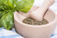 Fresh Basil Herbs Royalty Free Stock Photography
