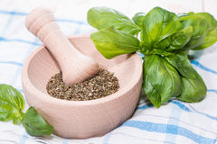 Fresh Basil Herbs Stock Photo