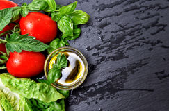 Fresh basil herbs and tomatoes with olive oil Stock Photo