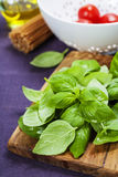Fresh basil and ingredients royalty free stock photography