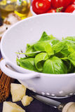Fresh basil and ingredients. Fresh basil in colander and ingredients for making italian pasta Royalty Free Stock Images