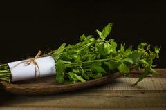 Fresh Basil leaf. On wood background stock photography