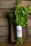 Fresh Basil leaf. On wood background stock photos