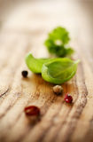 Fresh basil leaf on wood Royalty Free Stock Image