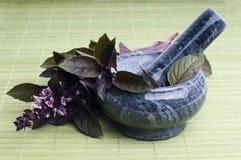 Fresh basil leaves Royalty Free Stock Photos