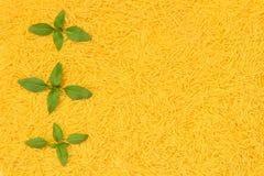Fresh basil leaves decorating noodles background stock photos