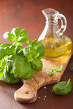 Fresh basil leaves herb and olive oil on wooden background Stock Image