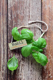 Fresh basil leaves and name tag Royalty Free Stock Photo