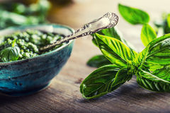 Fresh basil leaves pesto on wooden table Stock Images