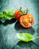 Fresh basil leaves with tomatoes Stock Photography