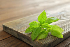 Fresh basil Stock Photo