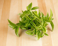 Fresh basil leaves on wooden board Stock Photography