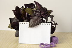 Fresh basil with notebook for recipes Stock Image