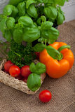Fresh basil, peppers, tomato and parsley Stock Images