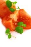 Fresh basil and tomato Royalty Free Stock Photography