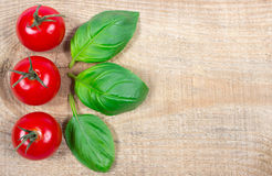 Fresh basil and tomato on wooden background. Royalty Free Stock Photos