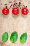 Fresh basil and tomato on wooden background. Royalty Free Stock Photo
