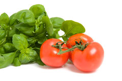 Fresh basil and tomatoes Royalty Free Stock Photography