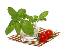 Fresh basil and tomatoes Royalty Free Stock Images