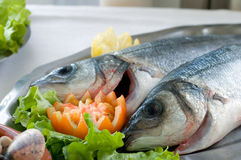 Fresh bass fish. Two basses over a tray with tomactoe Stock Photo
