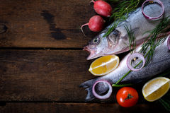 Fresh bass fish Stock Photo