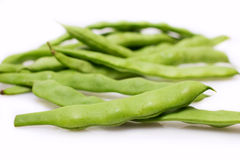 Fresh bean pods Royalty Free Stock Images