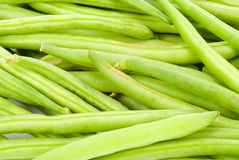 Fresh beans background Royalty Free Stock Image