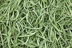 Fresh beans. Royalty Free Stock Photography