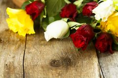 Roses on wooden background Stock Photos