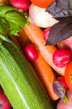 Fresh beautiful vegetables Stock Image