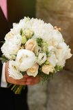 Fresh beautiful white roses wedding bouquet in groom hands close Royalty Free Stock Photography