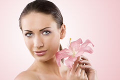 Fresh beauty and pink flower Stock Photography