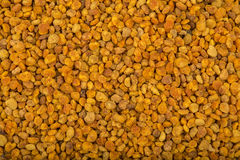 Fresh bee pollen Stock Photo