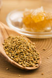 Fresh bee pollen with honeycomb Stock Images
