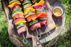 Fresh beef and vegetables with spices on grill Stock Images