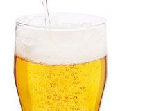 Fresh beer Royalty Free Stock Images